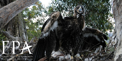 Expression of Interest: Eagle Habitat Identification and Management Course