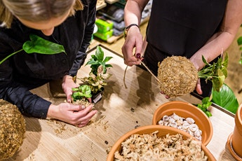 Gro Miranda Kokedama Workshop tickets