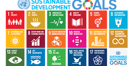 Walgreens Boots Alliance and the Sustainable Development Goals tickets