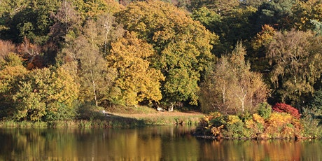 NATURE WALK 1 - Thursday 10th September 2020 tickets