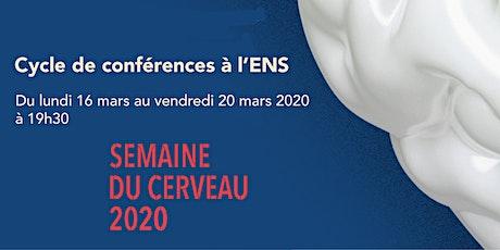 Semaine du cerveau 2020 - Cycle de conférences à l'ENS billets
