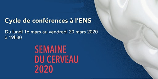 Semaine du cerveau 2020 - Cycle de conférences à l'ENS