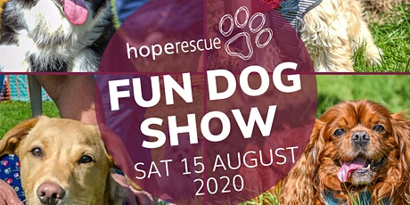 Caldicot Castle Dog Show 2020 tickets