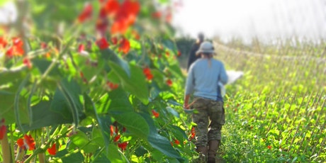 Community Farmer Day - 25 July - harvesting, watering and weeding tickets