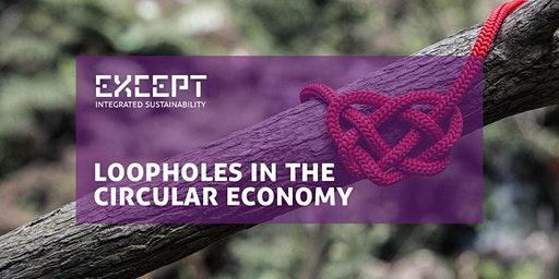 Loopholes in the Circular Economy