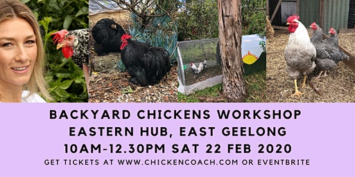 Chicken Workshop: Simple Steps to Successful Backyard Chooks