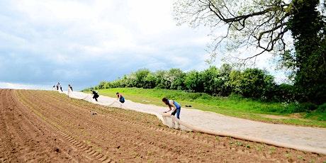 Community Farmer Day - 6 June - squash planting tickets