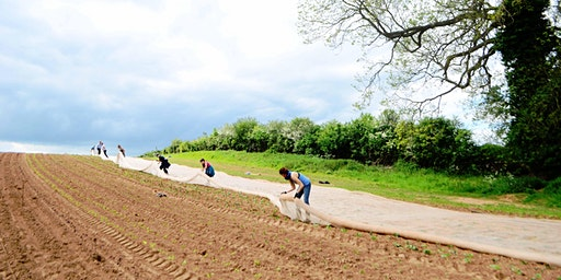 Community Farmer Day - 6 June - squash planting
