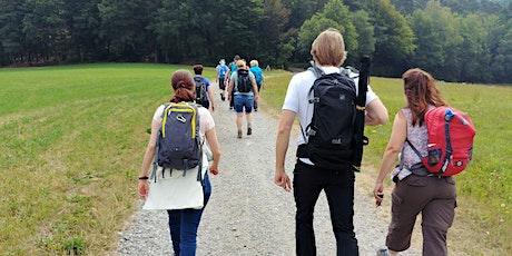 """Sa,14.03.20 Wanderdate """"Single Wandern Walburgiskapelle und Felsenquelle im Odenwald für 50+"""" tickets"""