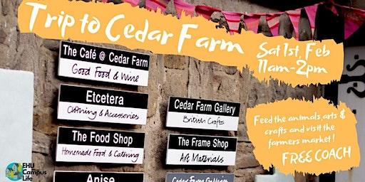 Trip to Cedar Farm 2020