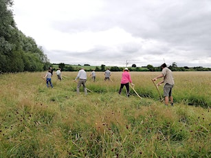 Learn to Scythe Course tickets