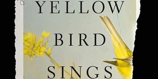Debut Novelist Jennifer Rosner Discusses The Yellow Bird Sings