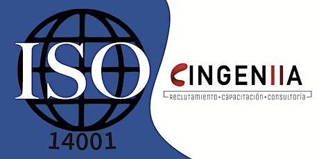 Interpretación y Formación de Auditor Interno ISO 14001:2015 entradas