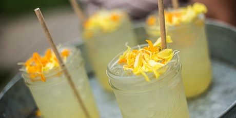 Garden to Glass Cocktail Workshop: Summer Spritzers tickets