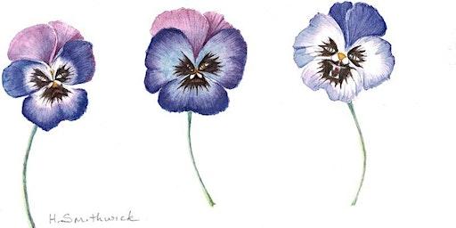 Botanical Watercolors For Beginners