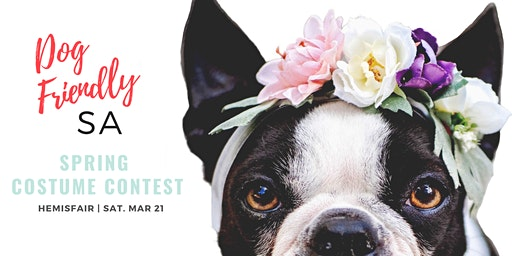 Paws in the Park Costume Contest with Dog Friendly SA at Hemisfair