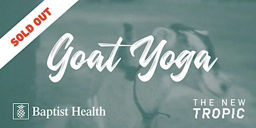 SOLD OUT: Goat Yoga: Get Down with the Kids
