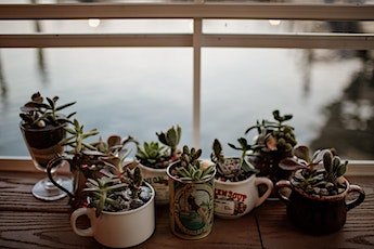 Succulent Building Workshop at Charm City Books! tickets