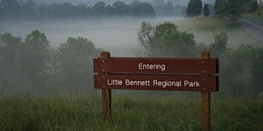 Little Bennett Hike | Clarksburg Tavern