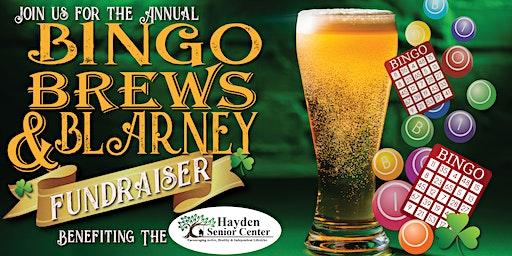 Annual Bingo, Brews & Blarney