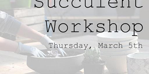 Succulent Workshop