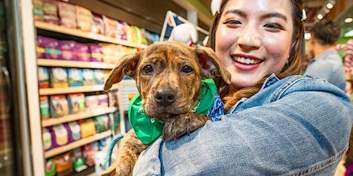 Pals and Pups Brunch (Pasadena)
