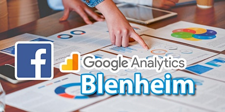 Introduction to Google and Facebook Analytics - Blenheim tickets
