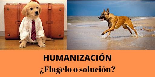 HUMANIZACIÓN: ¿Flagelo o solución?