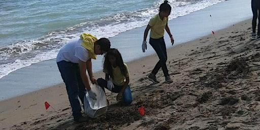 Monitoreo desperdicios sólidos en las costas de Cataño