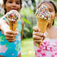 CDSC's Bronx Summer Camp Fair