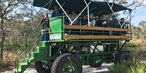 Tiger Creek Preserve swamp buggy short tour 2/1 10:30am