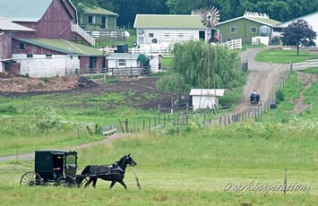 Amish Day Trip: Real Housewives of Holmes County, Ohio tickets