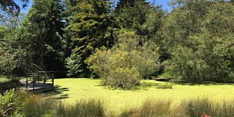 John McLaren Park Habitat Restoration Volunteer Project tickets