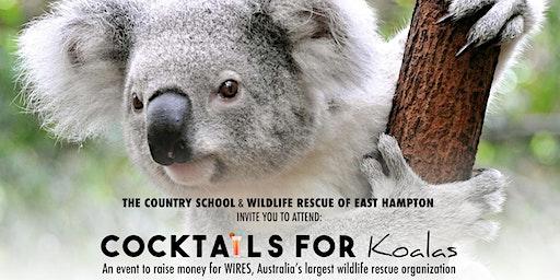 Cocktails for Koalas