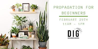 Propagation for Beginners (w/ starter kit!)