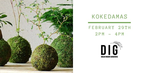 Let´s do a Kokedama! (and take it home)