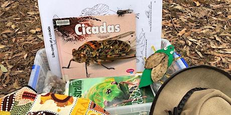 Bush Kids Cicada Days tickets