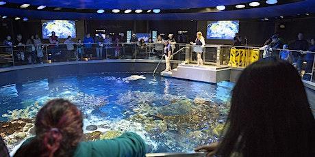 New England Aquarium tickets