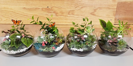 Create a  Glass Terrarium tickets