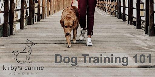 Dog Training 101 Class
