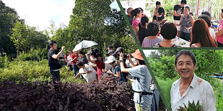 本土草药学习游 | 南大芳草园 NTU Community Herb Garden tickets