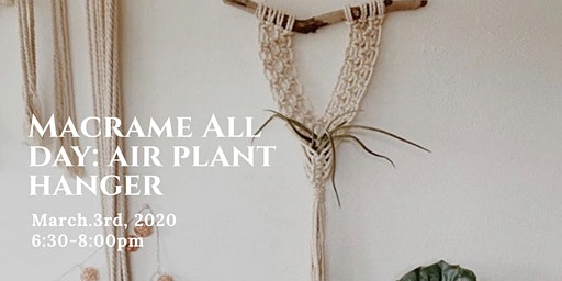 Macrame All Day: Air Plant Hanger (Air Plant Included)