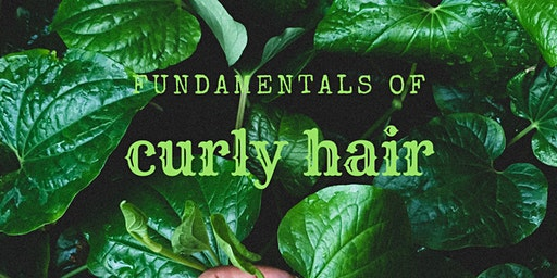 Fundamentals of Curly hair workshop