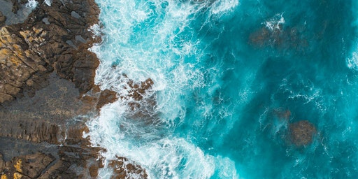 Free Climate Change & Oceans Forum: Global impacts and Local Solutions