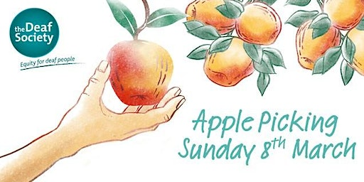 Apple Picking with The Deaf Society. An Auslan Interpreted Tour