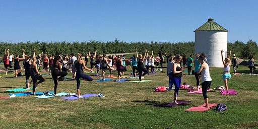 Yoga + Apples at Eckert's Family Farms