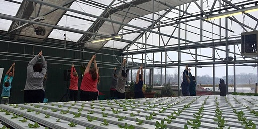 Yoga + Cooking Demo at Eckert's Family Farms