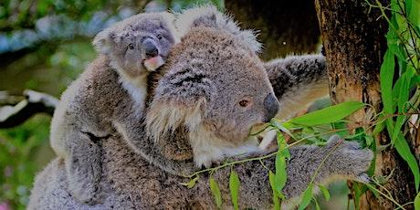 Vinyasa - Australia Bushfire Relief & Recovery tickets