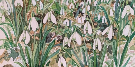 Plant study workshop in pencil and watercolour – Winter Flowers with Jill Dow - £99.58