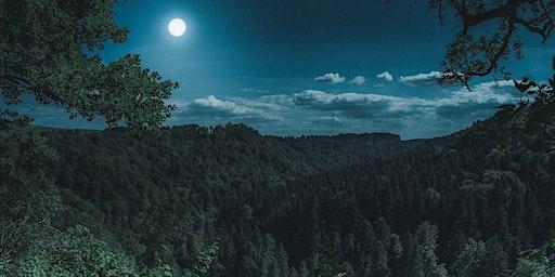 Vollmond-Waldbaden-Wanderung